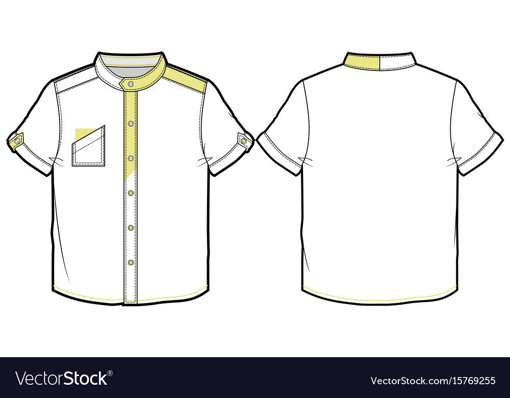 Summer shirt with short sleeves vector image