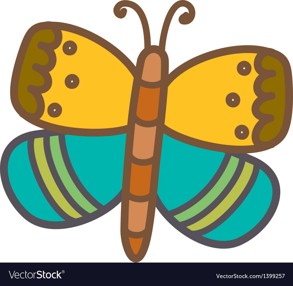 A butterfly vector image