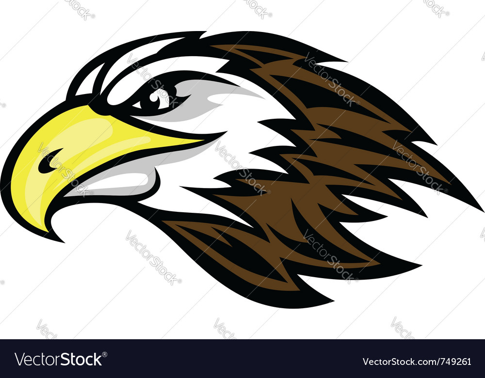 Falcon head mascot vector image