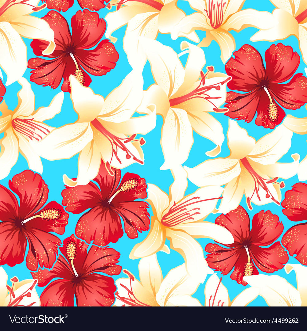 Red white and yellow tropical hibiscus flowers vector image