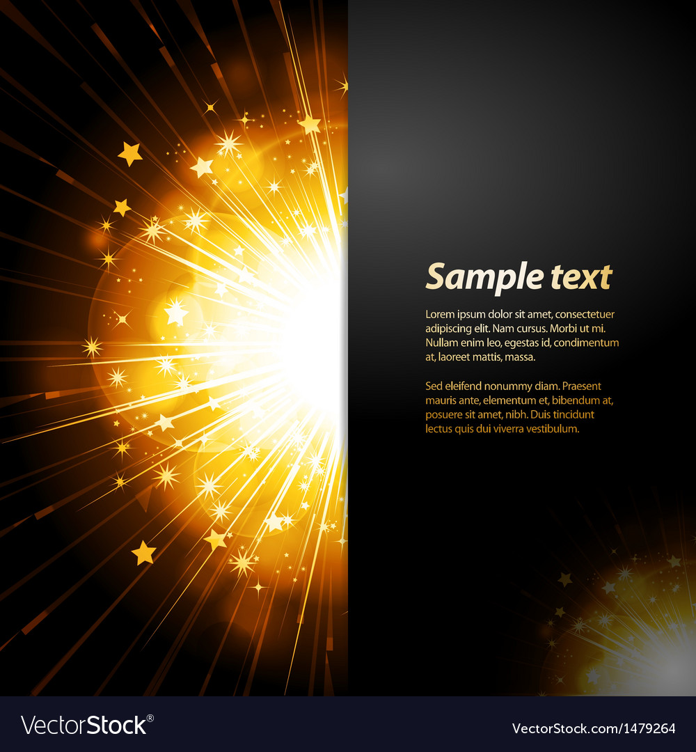 Firework starburst panel background with sample vector image