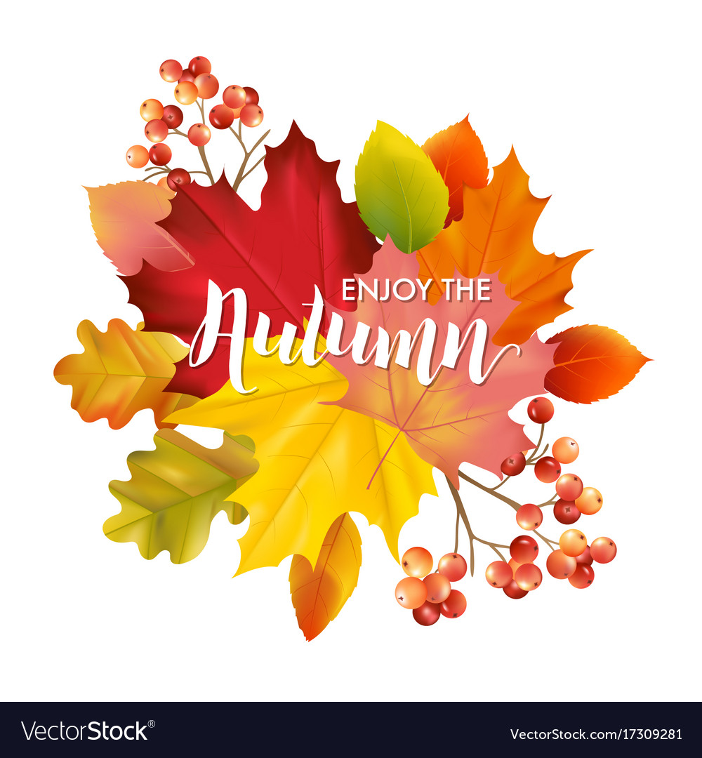 Colorful card or banner with autumn leaves vector image