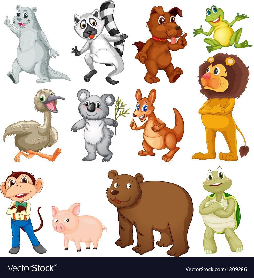 Land animals vector image