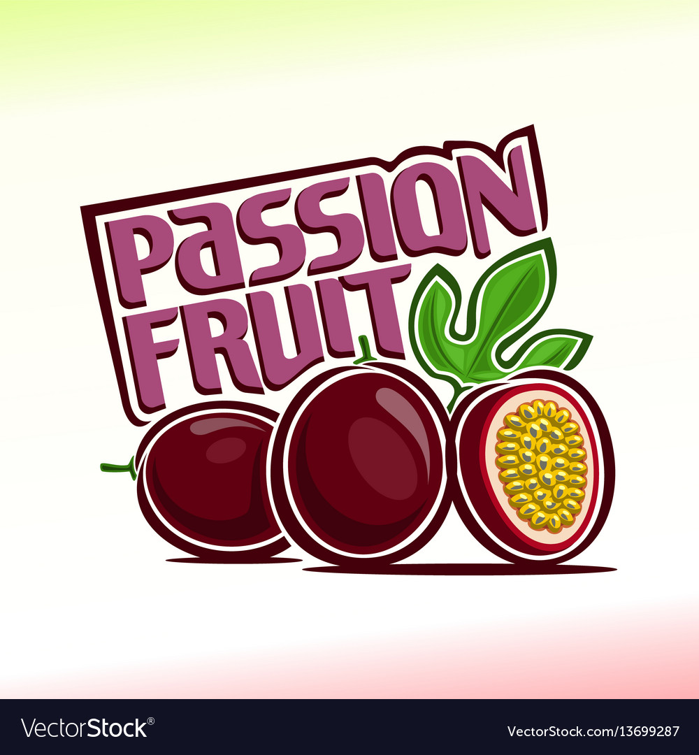 Passion fruit still life vector image