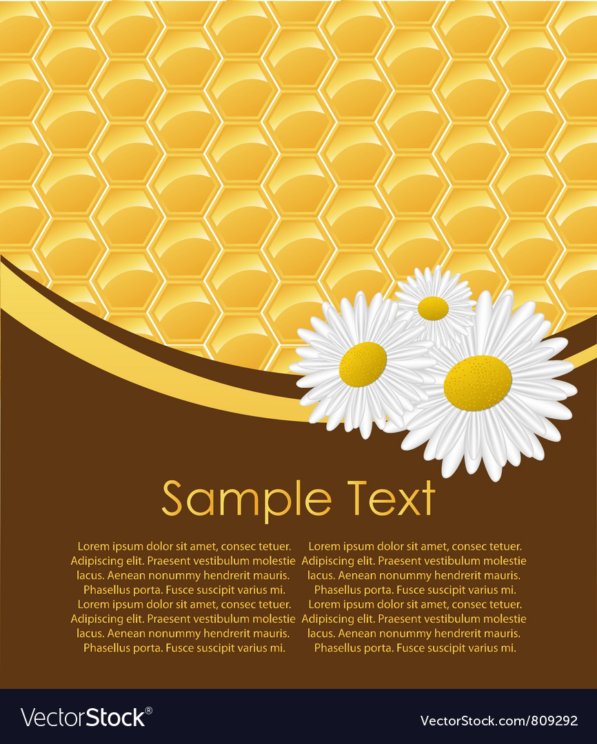 Honeycomb Seamless vector image