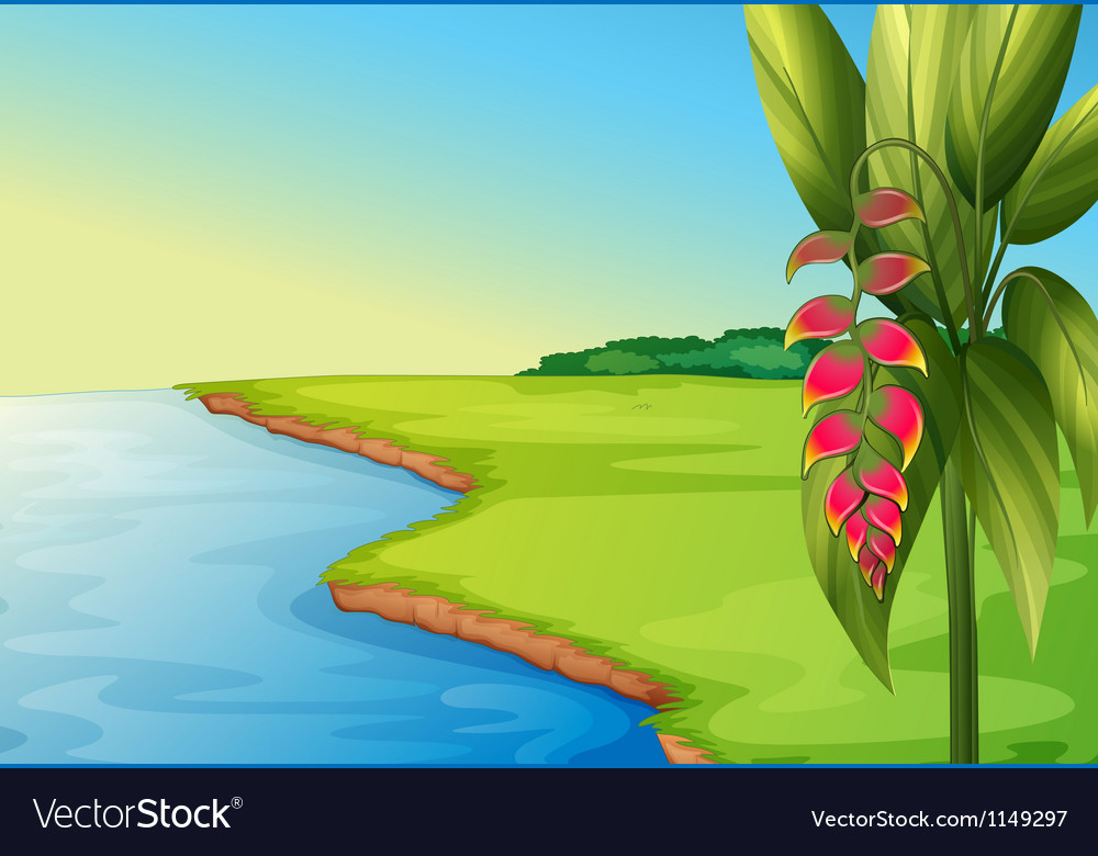 A panoramic view vector image