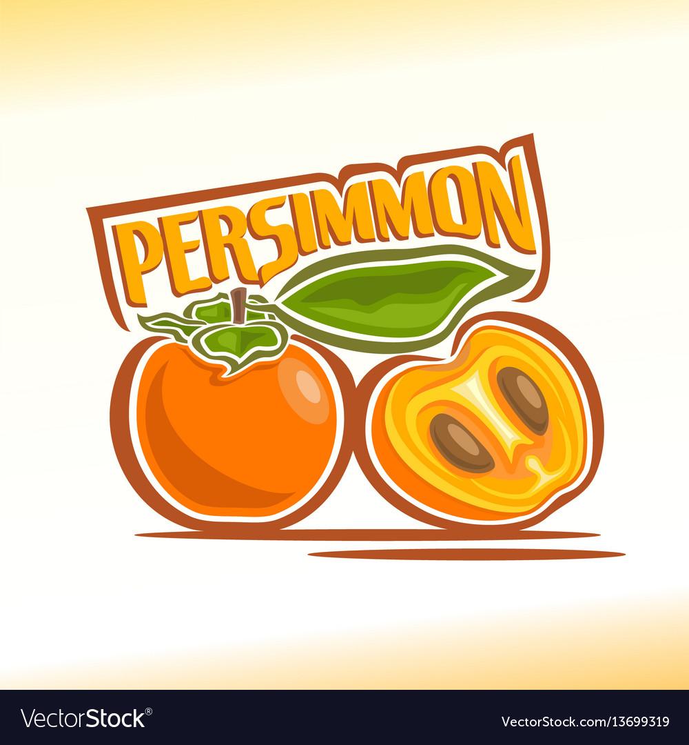Persimmon still life vector image