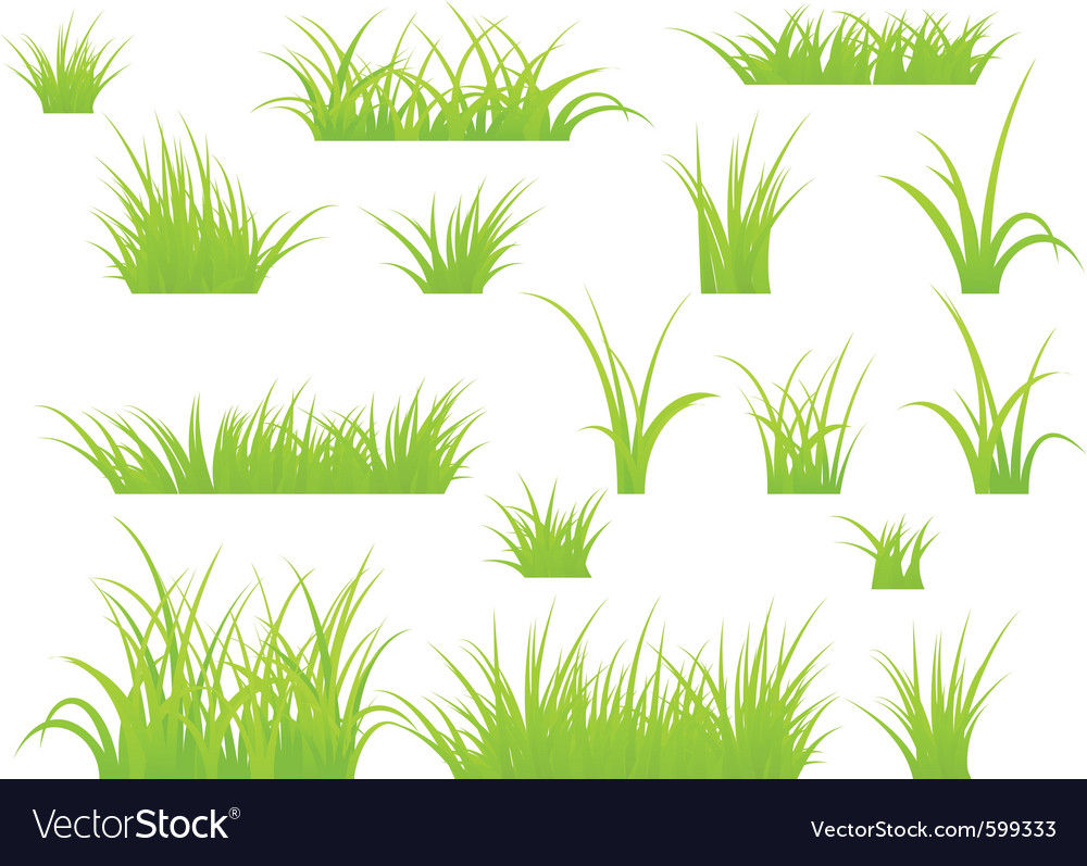 Grass patches vector image