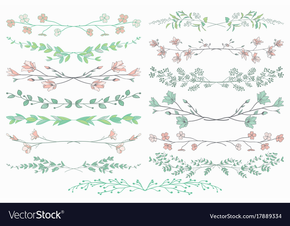 Dividers with branches plants and flowers vector image