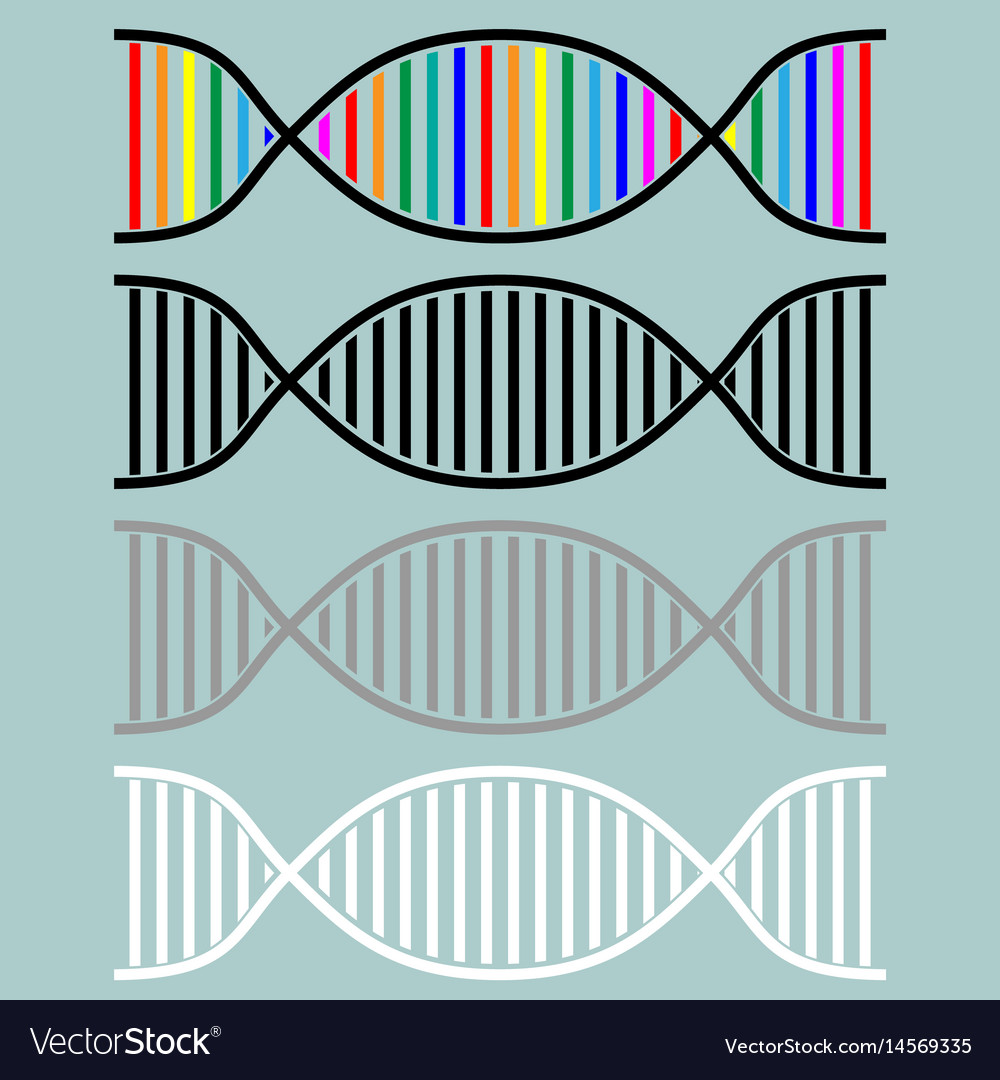 Dna or desoxyribonucleic acid icon vector image