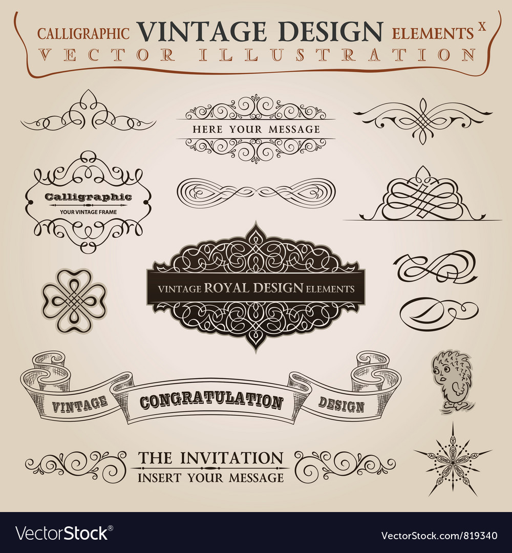 Calligraphic elements vintage vector image