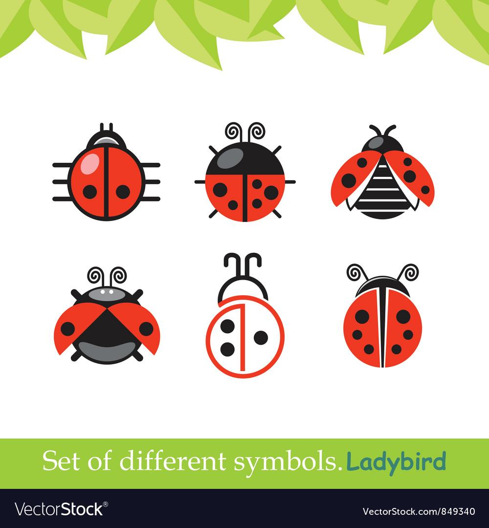 Ladybird ladybug set of symbols vector image