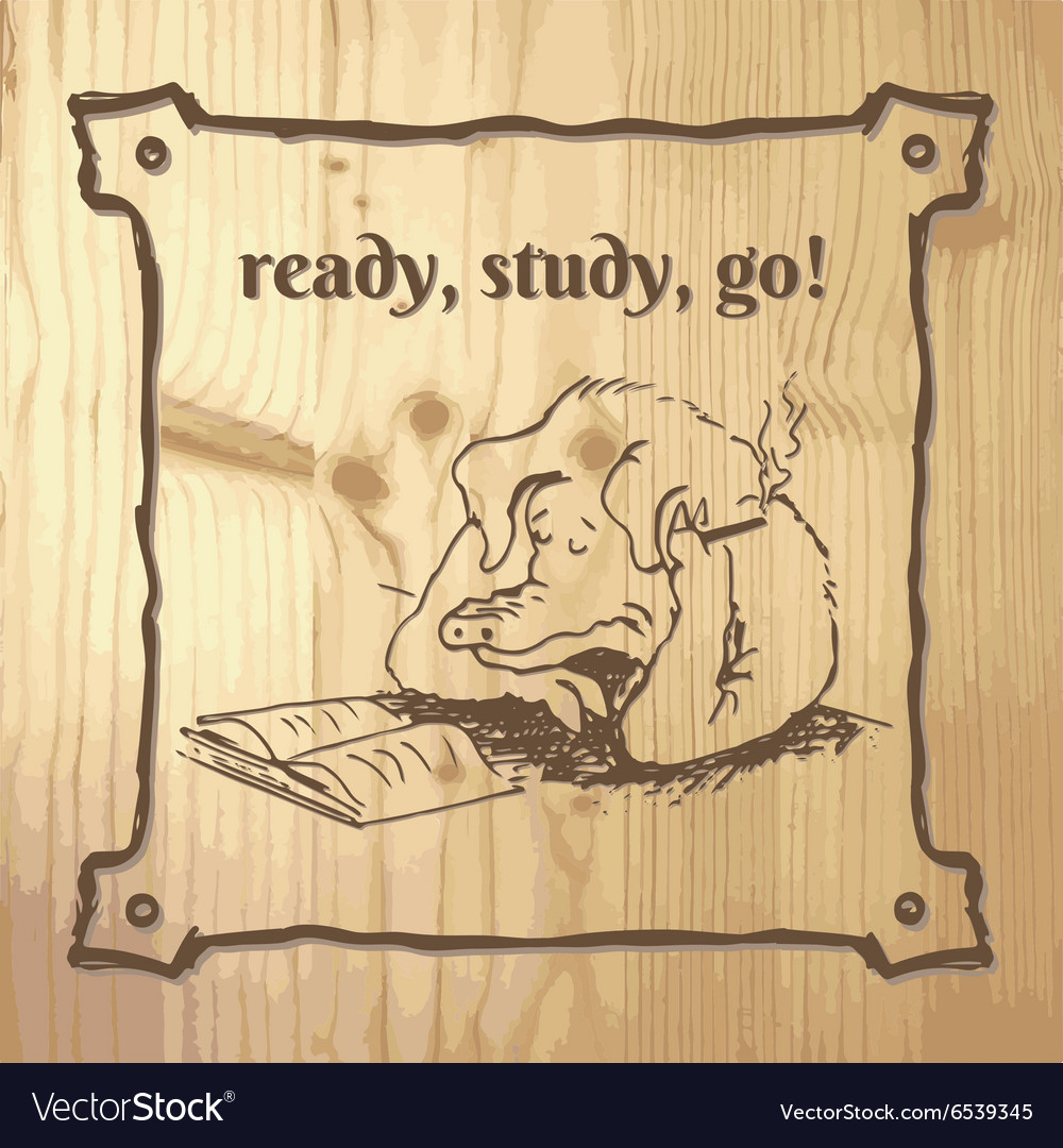 PigStudy vector image