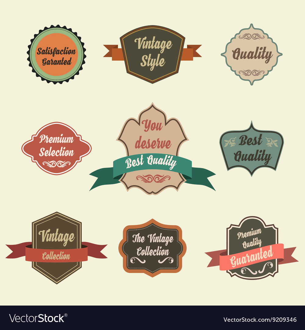 Set of retro vintage badges and labels Pin badge vector image