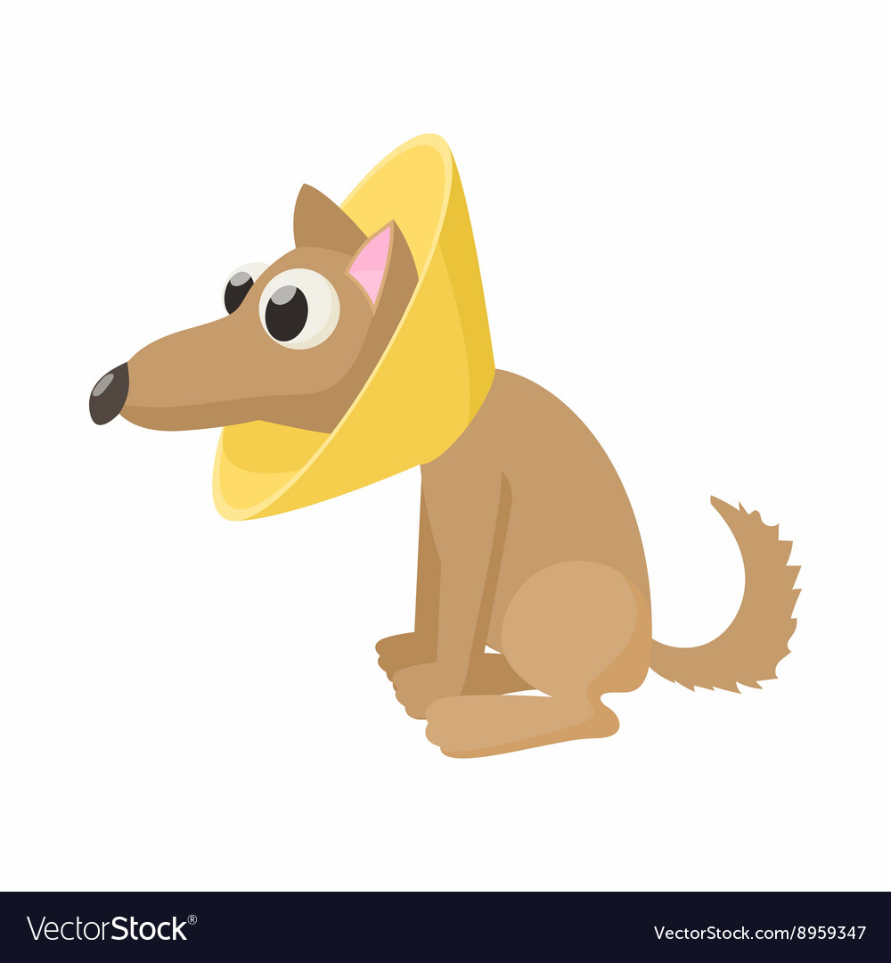 Dog in neck brace icon cartoon style vector image