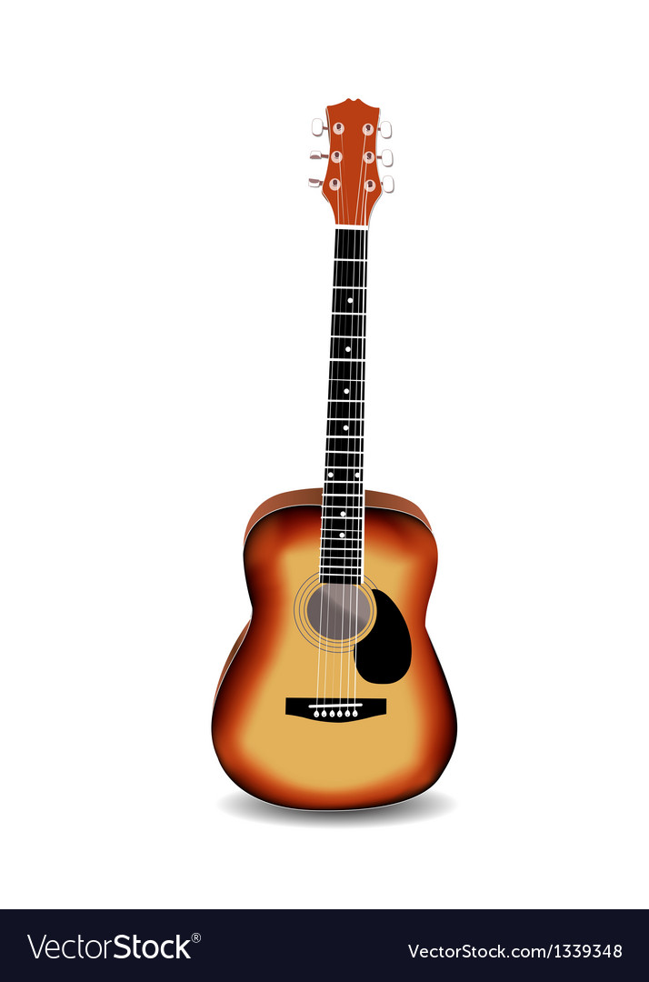 Acoustic guitar on a white background vector image