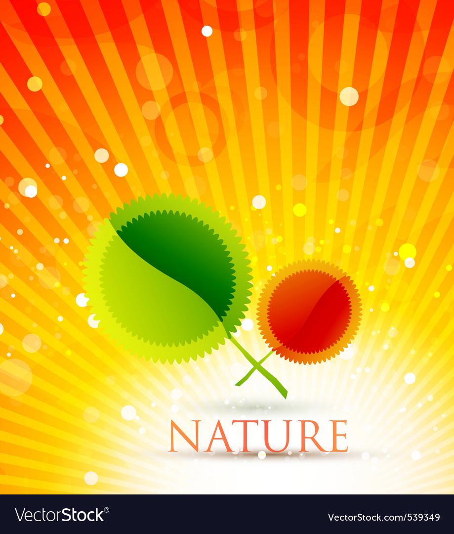 Autumn spring vector image