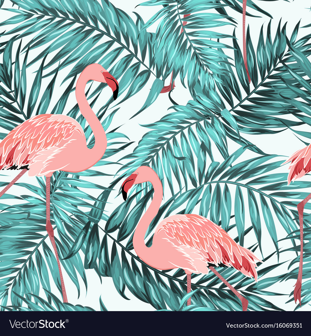 Turquoise tropical jungle leaves pink flamingos vector image