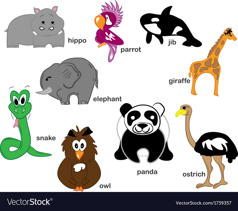 Wildlife Animals vector image