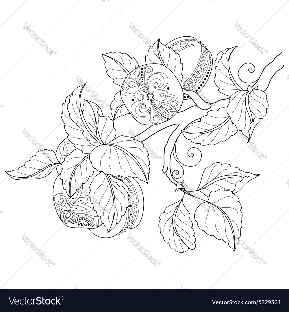 Monochrome Fruit Background vector image