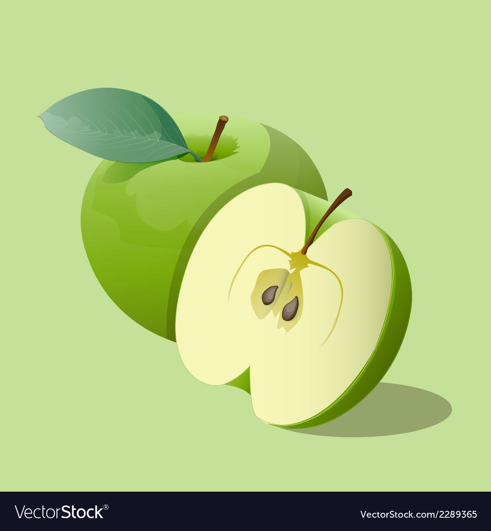 Ripe green apples vector image