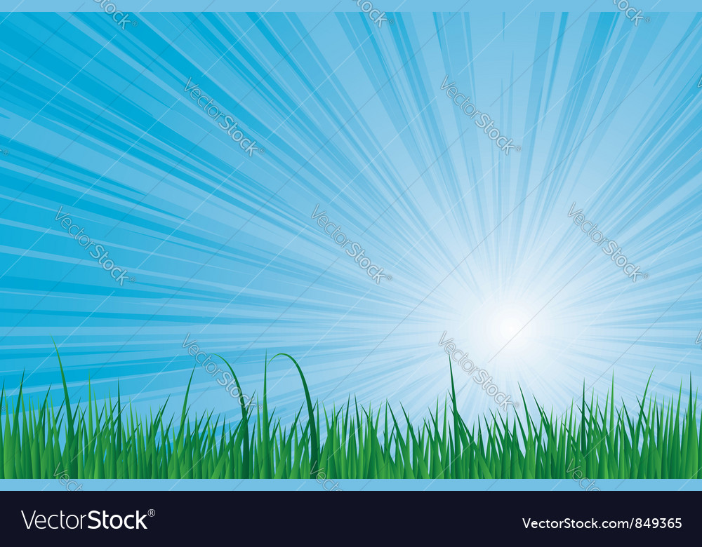 Sunburst green grass vector image