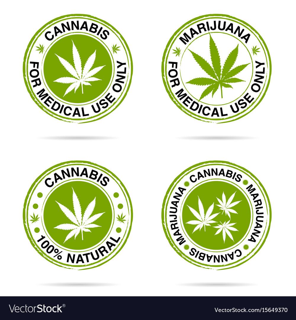 Grunge rubber of marijuana set in green vector image