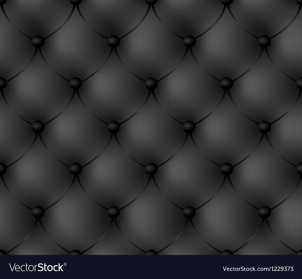 Luxury black background Vector Image