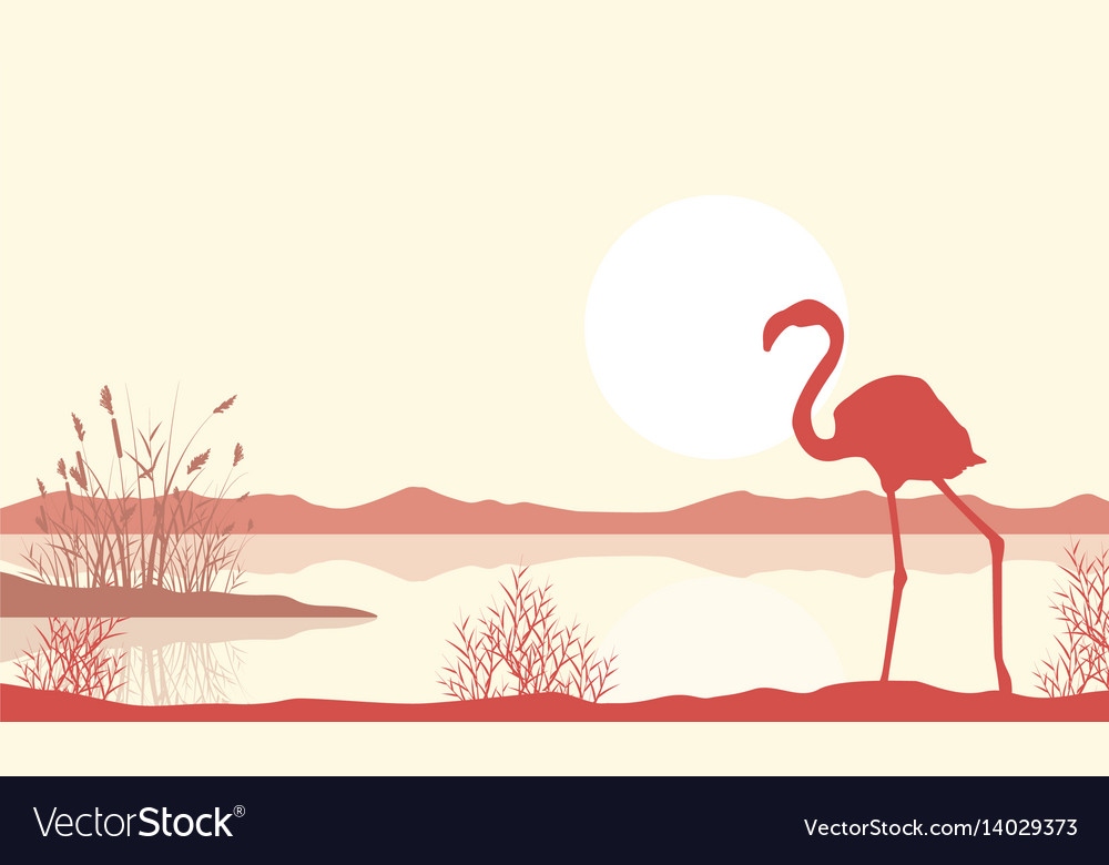Silhouette of flamingo on lake landscape vector image