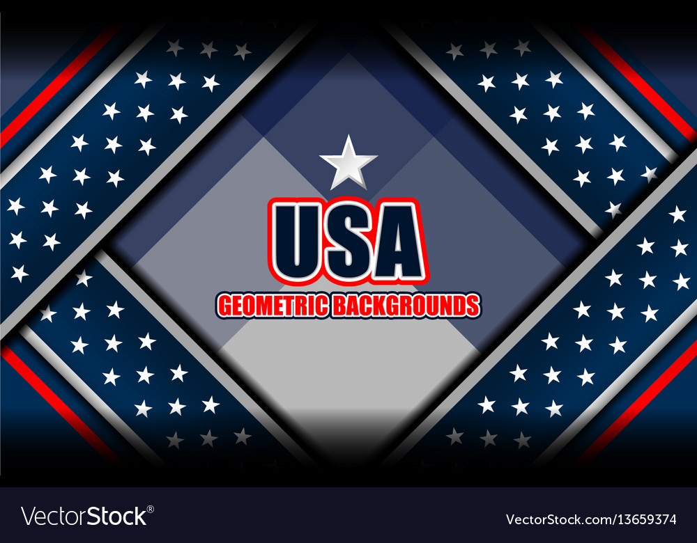Flag usa backgrounds style vector image