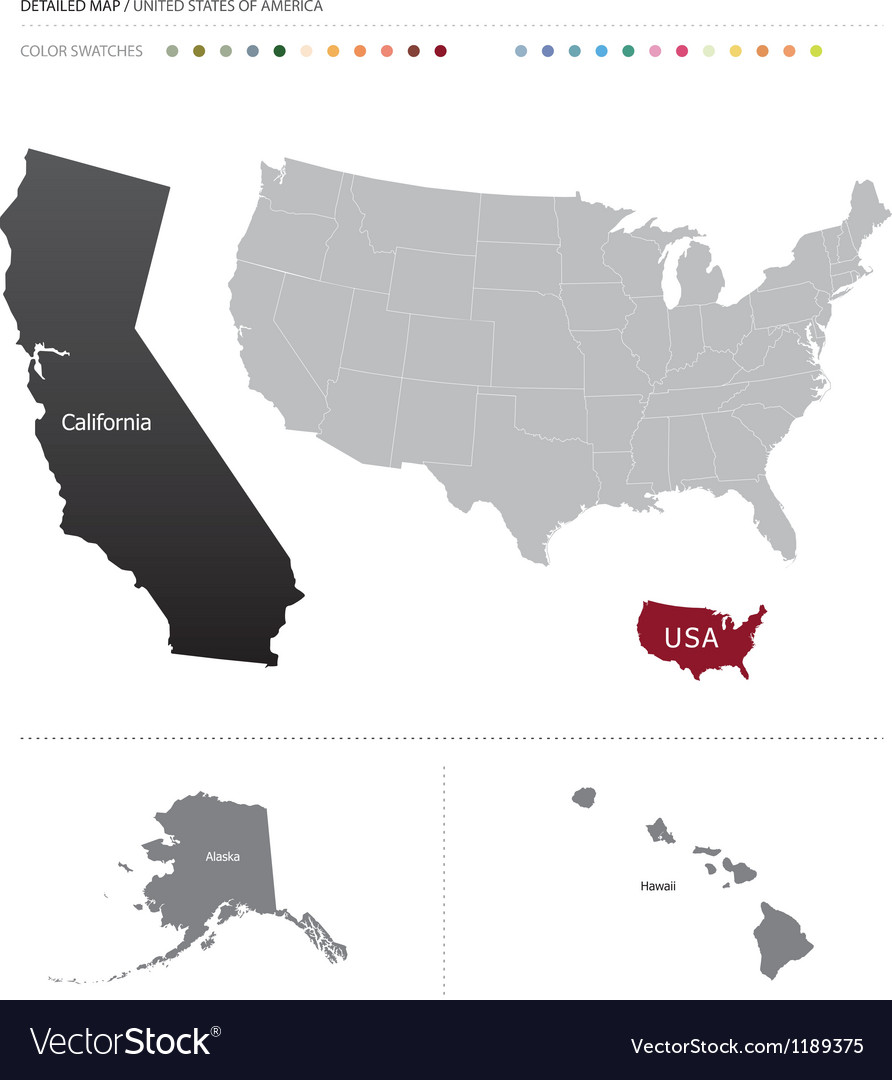 Detailed usa map vector image