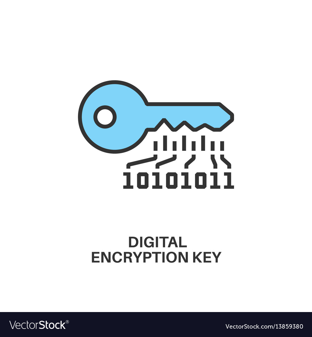 Digital encryption key icon vector image