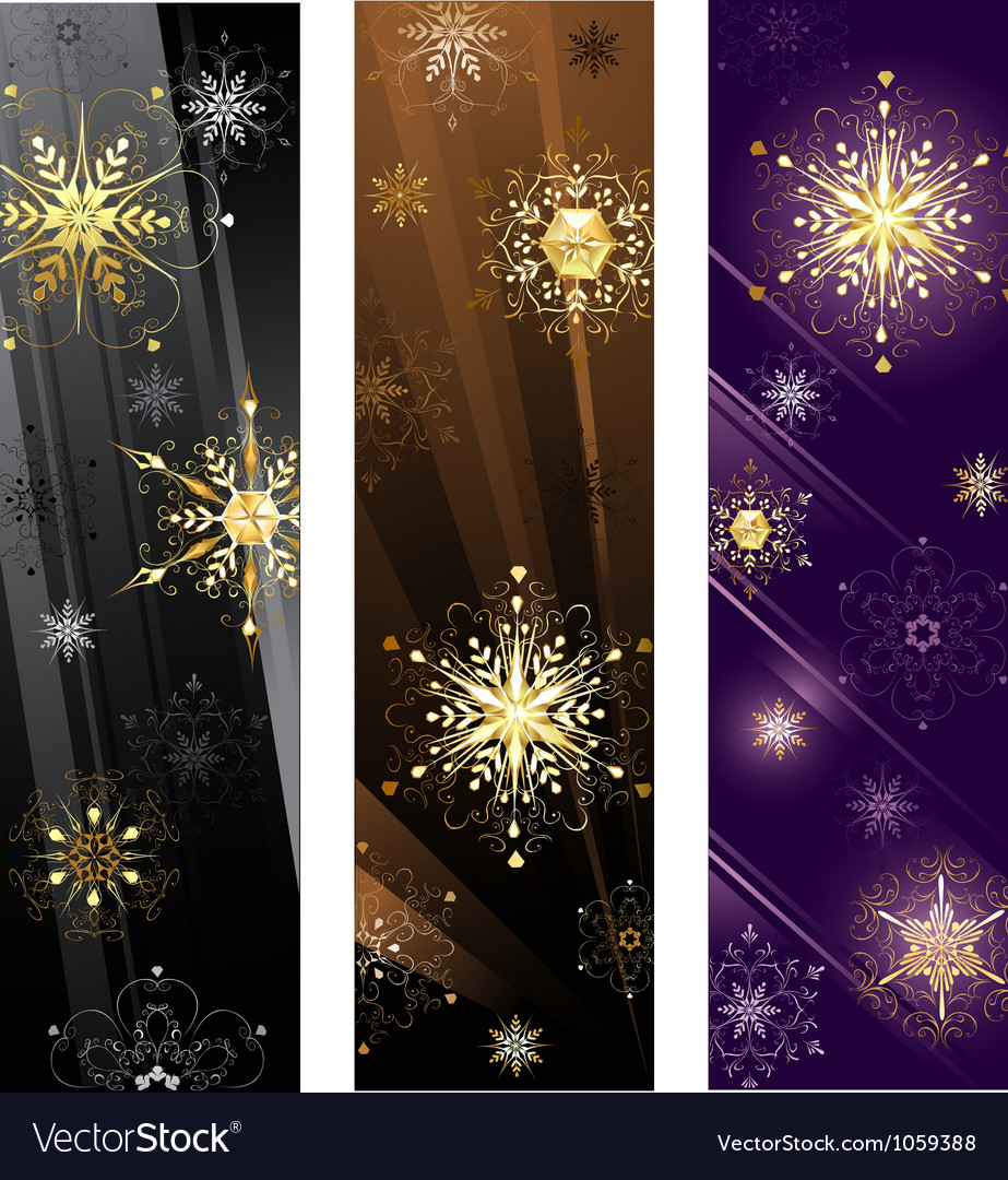 Banner with golden snowflakes vector image