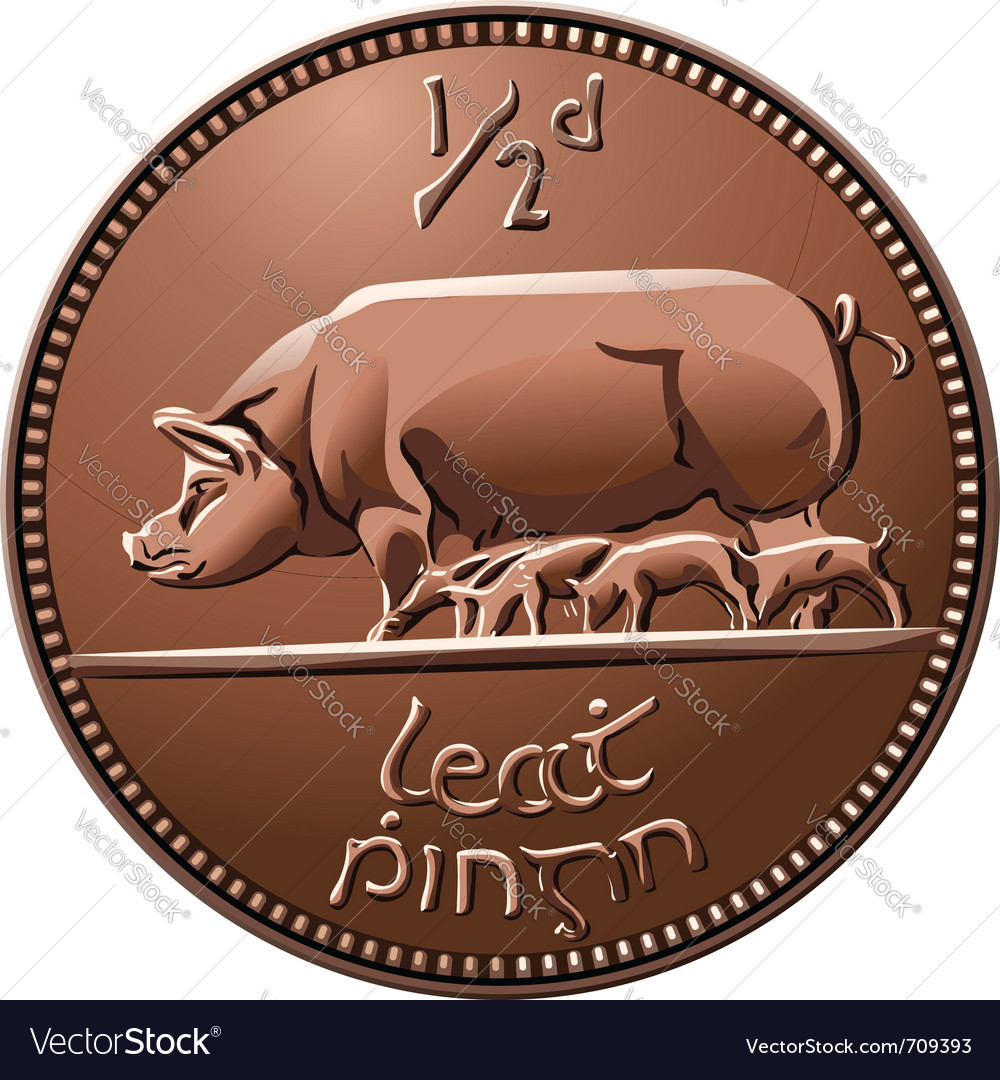 Irish money cooper coin vector image