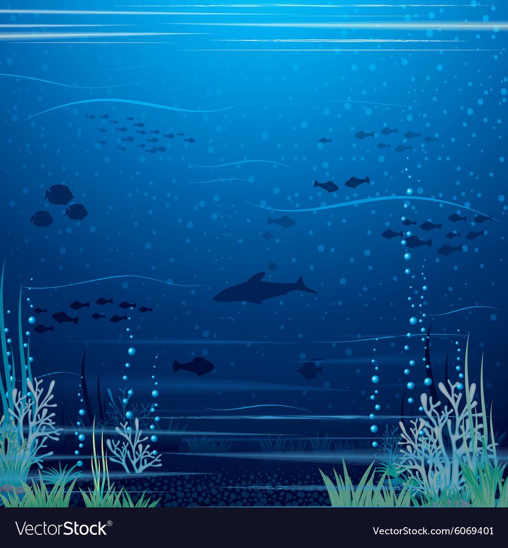 Beautiful Underwater Landscape Art vector image