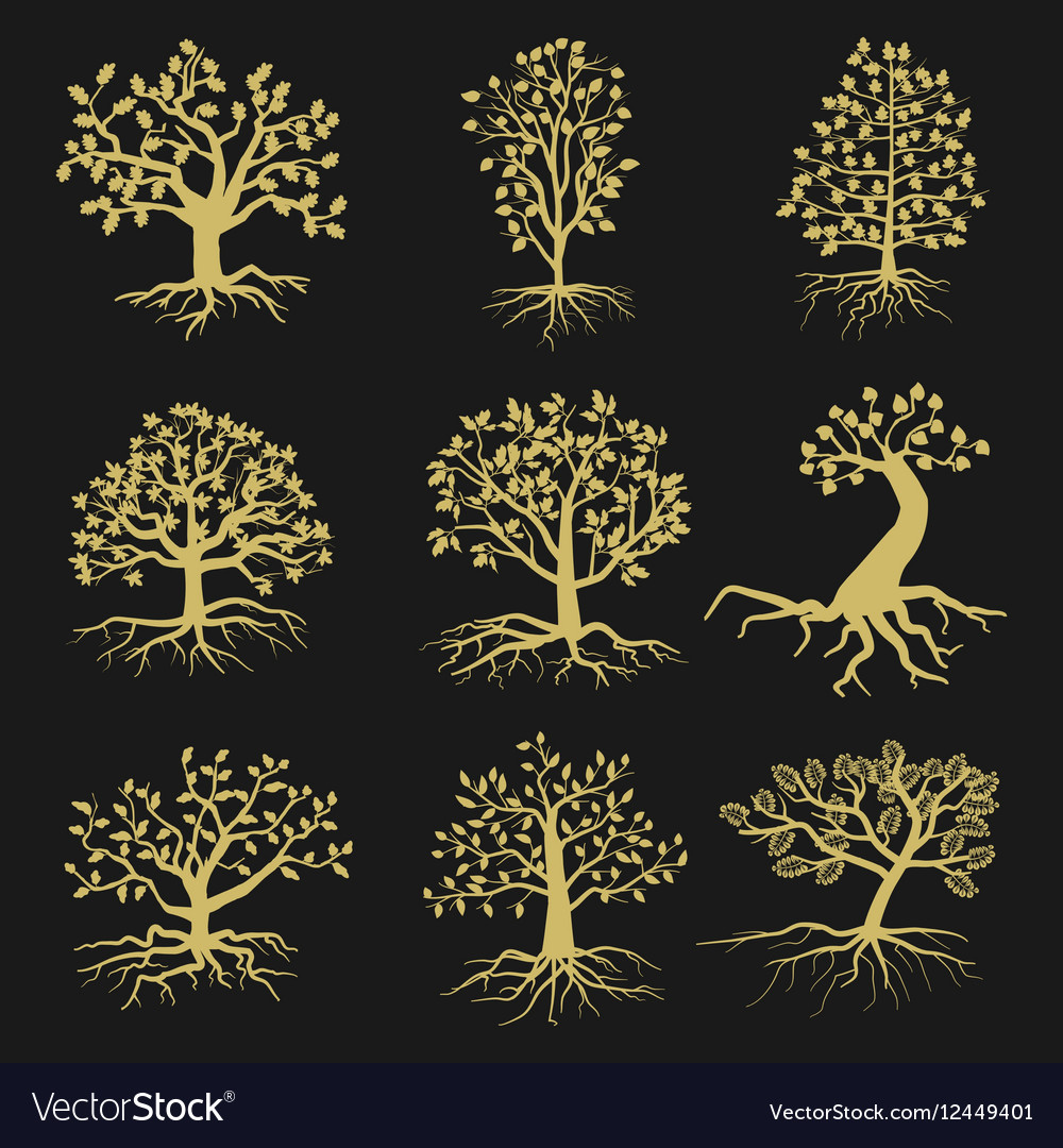 Black tree silhouettes with leaves and roots vector image