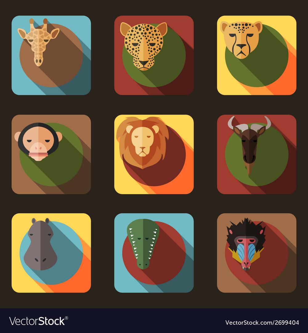 Animal Portrait Set with Flat Design vector image