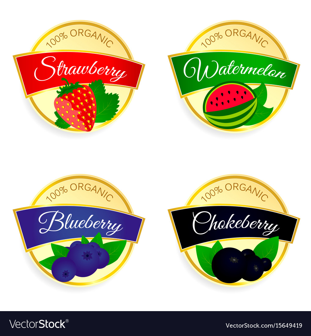 Label of fruit set in colorful vector image