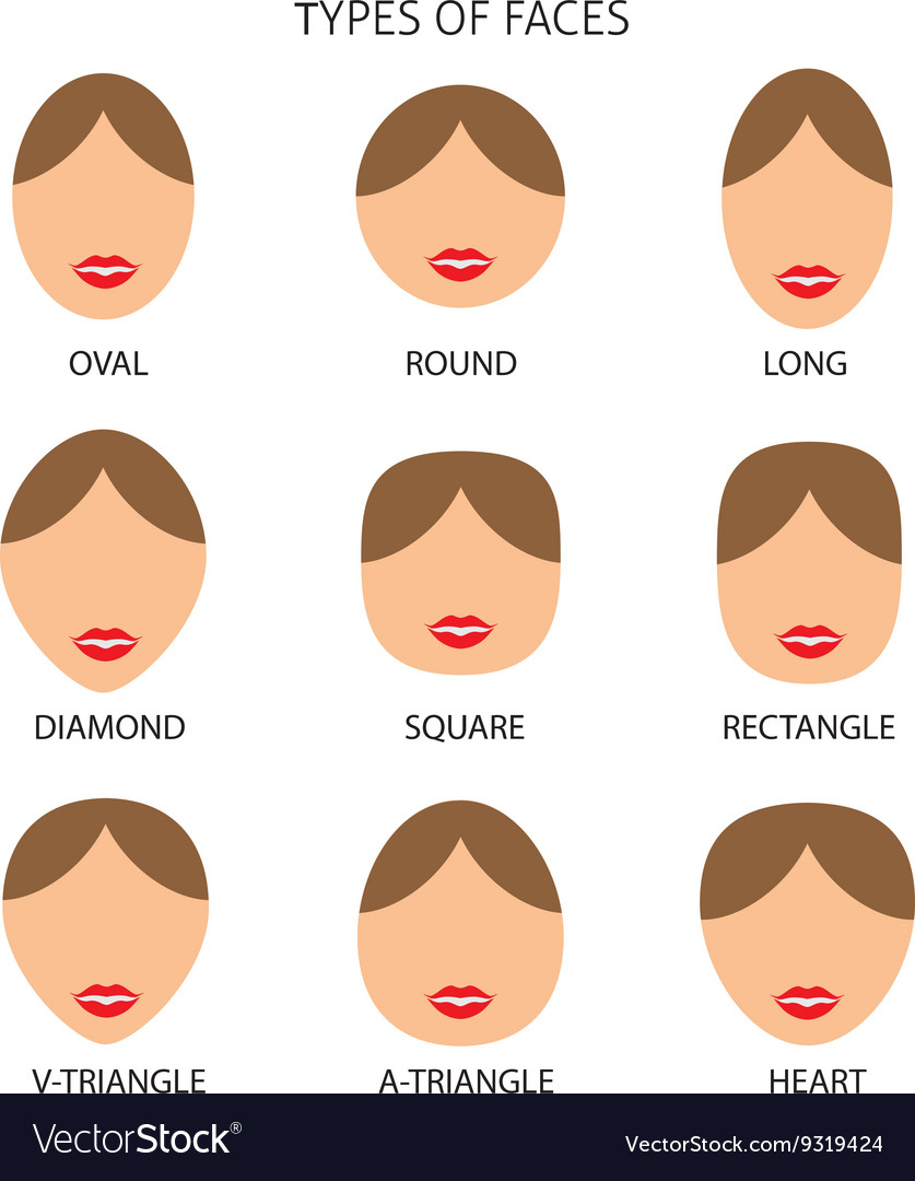 Woman Faces Types vector image