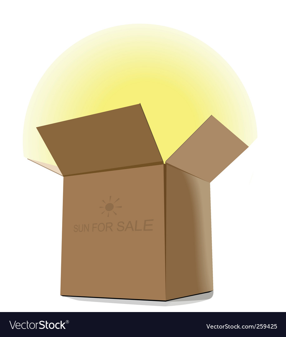 Gift sun for sale vector image