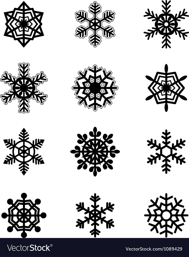 Snowflakes collection vector image