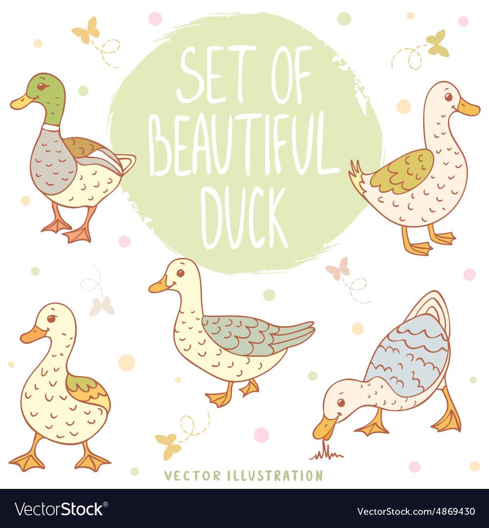 Ducks set vector image