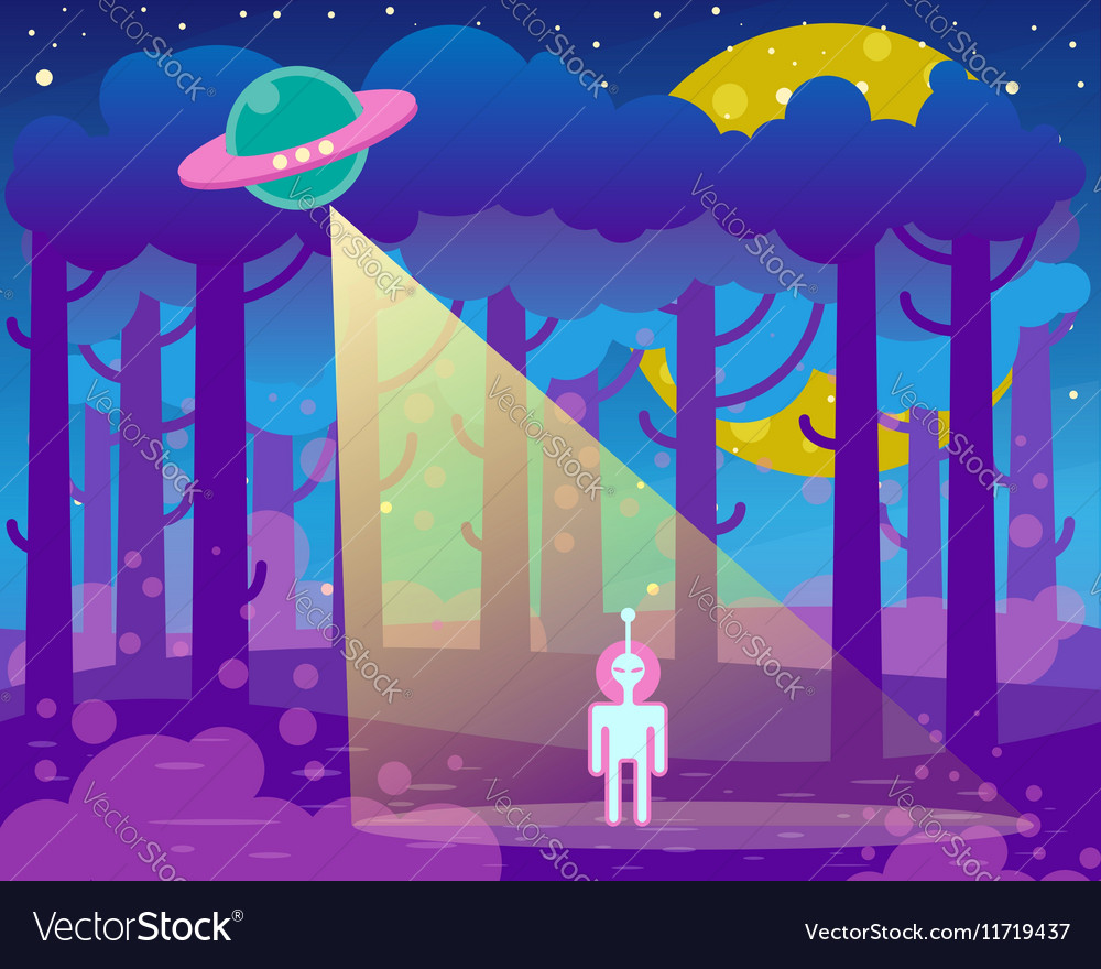 Flat about night landscape ufo vector image