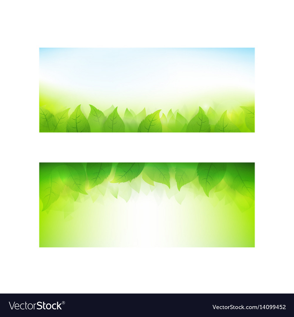 Set of banner gradient green background element vector image