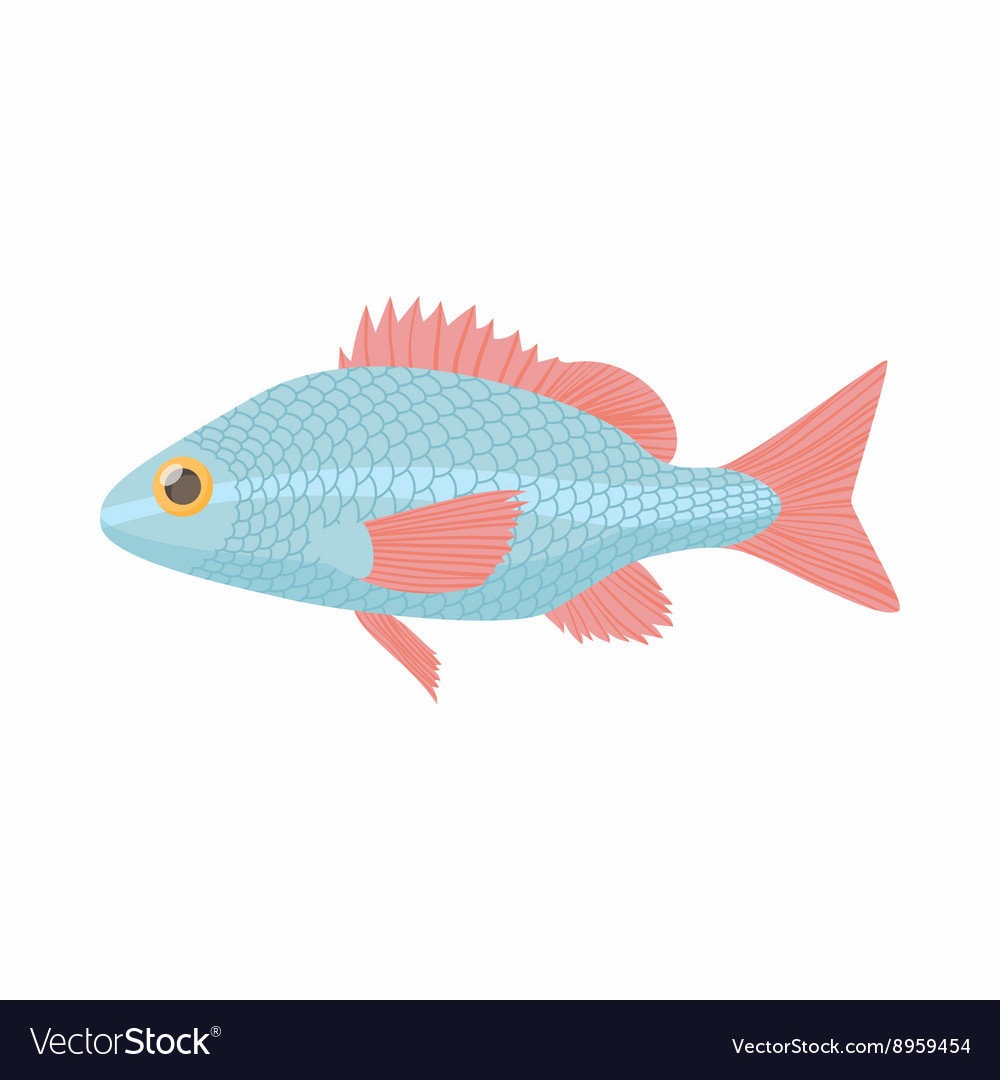 Fish carp icon cartoon style vector image