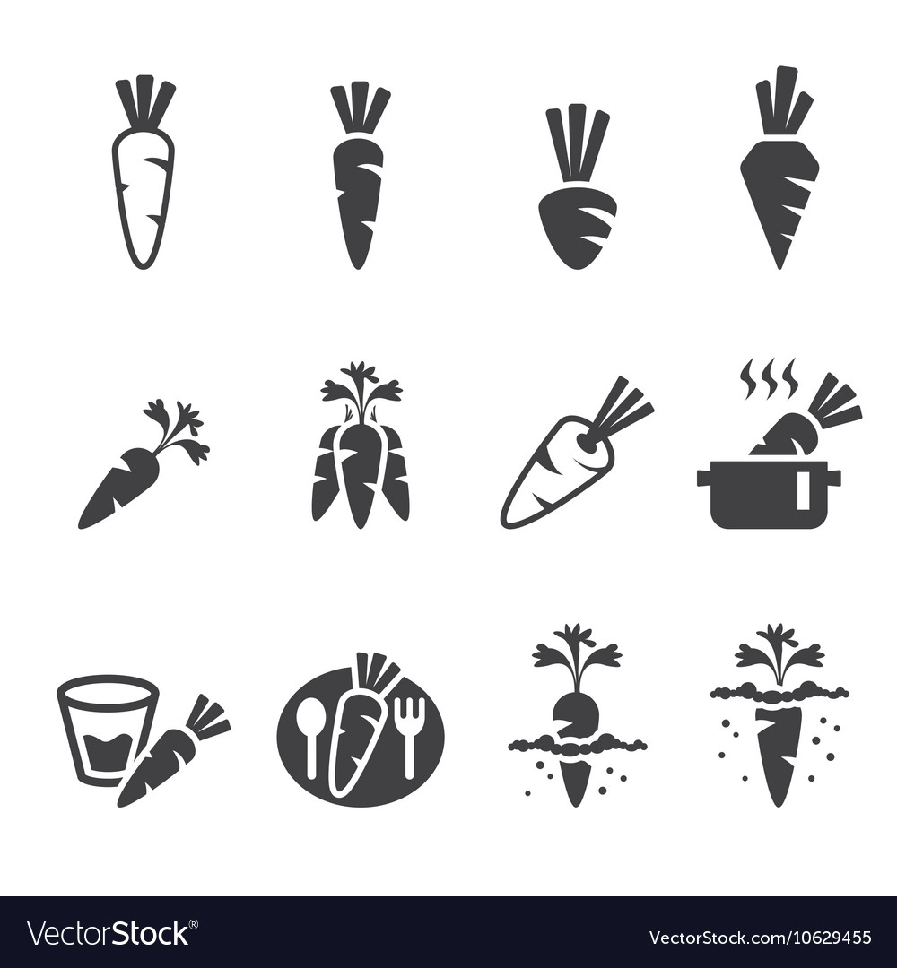 Carrot icon set vector image