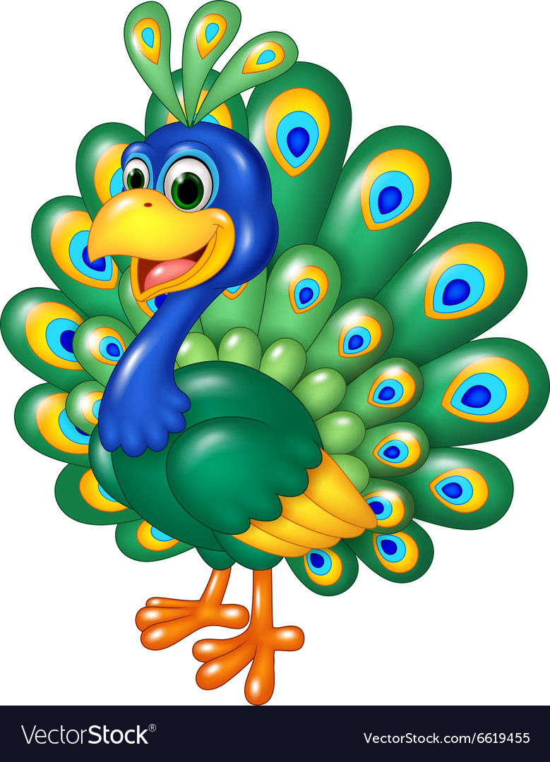 Cartoon funny peacock isolated on white background vector image