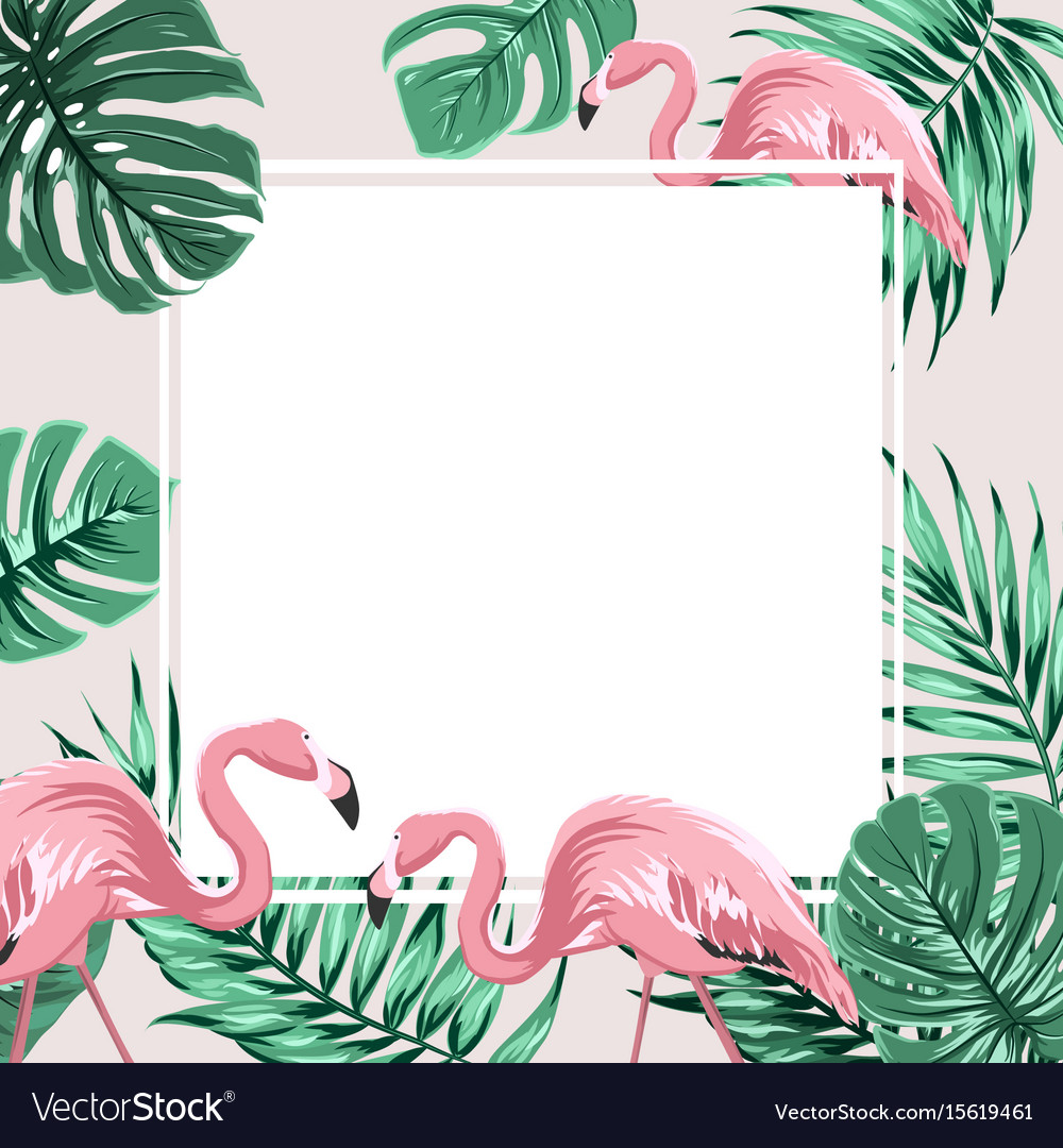 Tropical Border Frame Banner Leaves Flamingo Birds