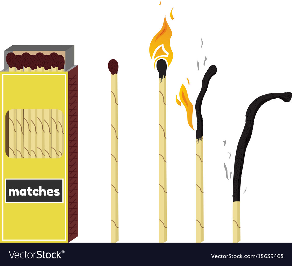 Nice Long Fireplace Matches Vector Image