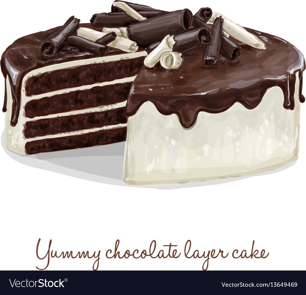 Chocolate layer cake vector image